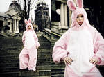 Fashion The Bunny