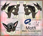 Moth Reference Sheet 2k15