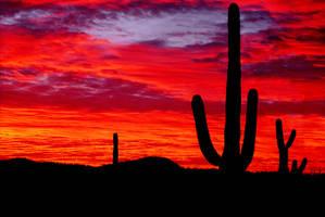 Arizona Skyways III by jimothy