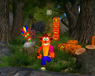 Crash Bandicoot front shot by croguy