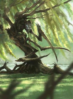 Willow Herder