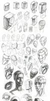 anatomy sketches