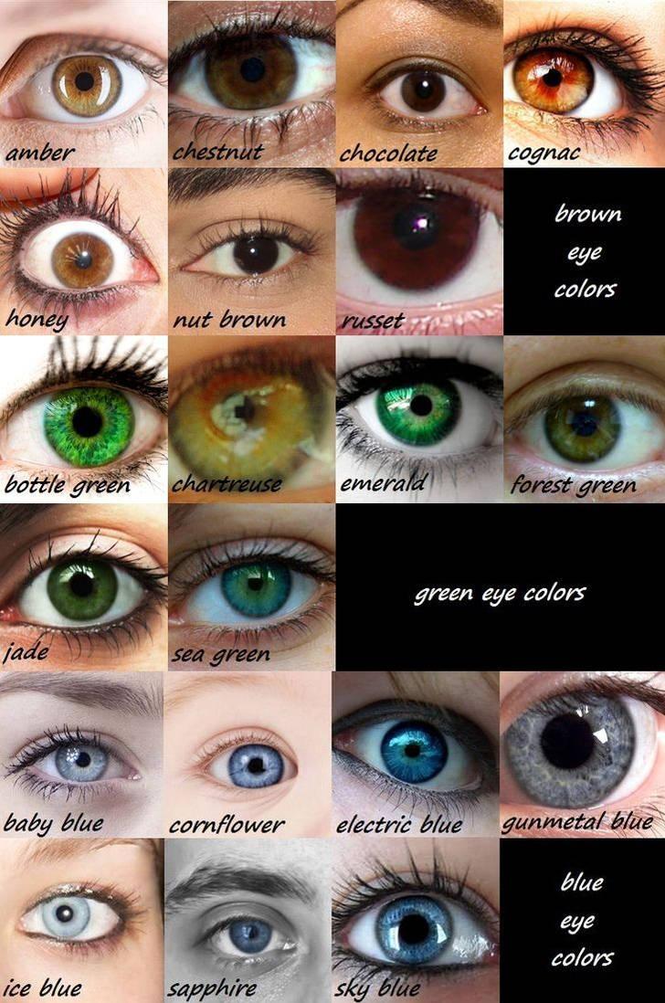 Eye Color Chart by lemontrash on DeviantArt