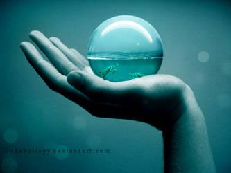 Swimming turtles by LB-digital