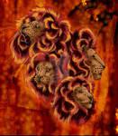 lions, lions, lions