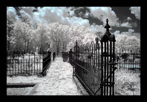 graveyard - infrared by rare-twinkie