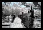 graveyard - infrared