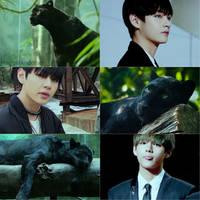 El Dorado - V Animal Collage