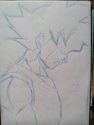 Son Goku by Ben113