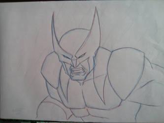 Wolverine by Ben113