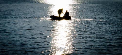 Silhouette by YadavThyagaraj