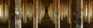 Forest of Pillars