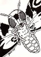 Mothra Sketch Card by jamsketchbook