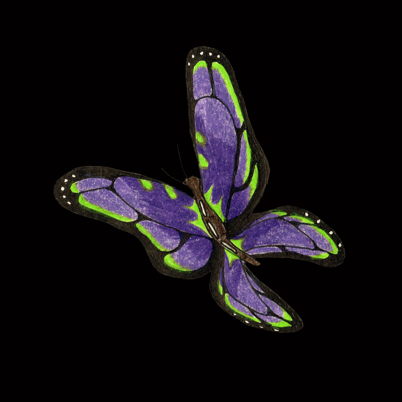 Purple Butterfly by jamsketchbook