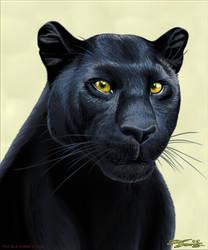 Panther.TrueBlue.Szekeres by Jozef-Szekeres