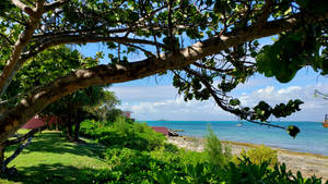 Seaside GreenSpace HD Wallpaper