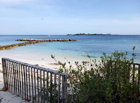 Saunders Beach Sand Fence