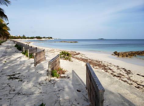 Saunders Beach Sand Fences