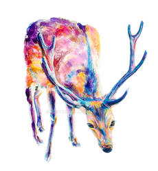 Deer Bow