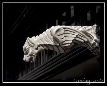 Gargoyle by sandyprints