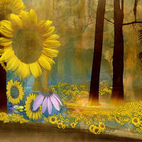 SunFlower Surreal Background by mysticmorning