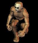 ClownFace png2