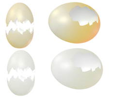 Egg Shells png by mysticmorning