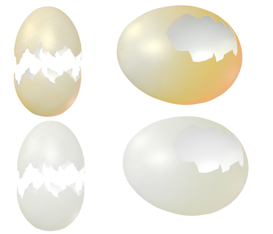 egghells Useful uses for egg shells here are all of the awesome things egg shells can be used for: 1 chicken feed the first thing you can do with your egg shells is simply to toss them back to your chickens.