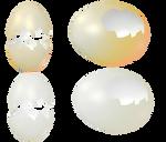 Egg Shells png