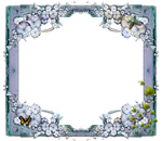 Butterfly Frame png