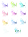 Wing Set 2 png