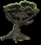 Fantasy Tree png