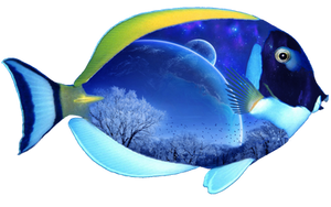 Fantasy Fish png by mysticmorning