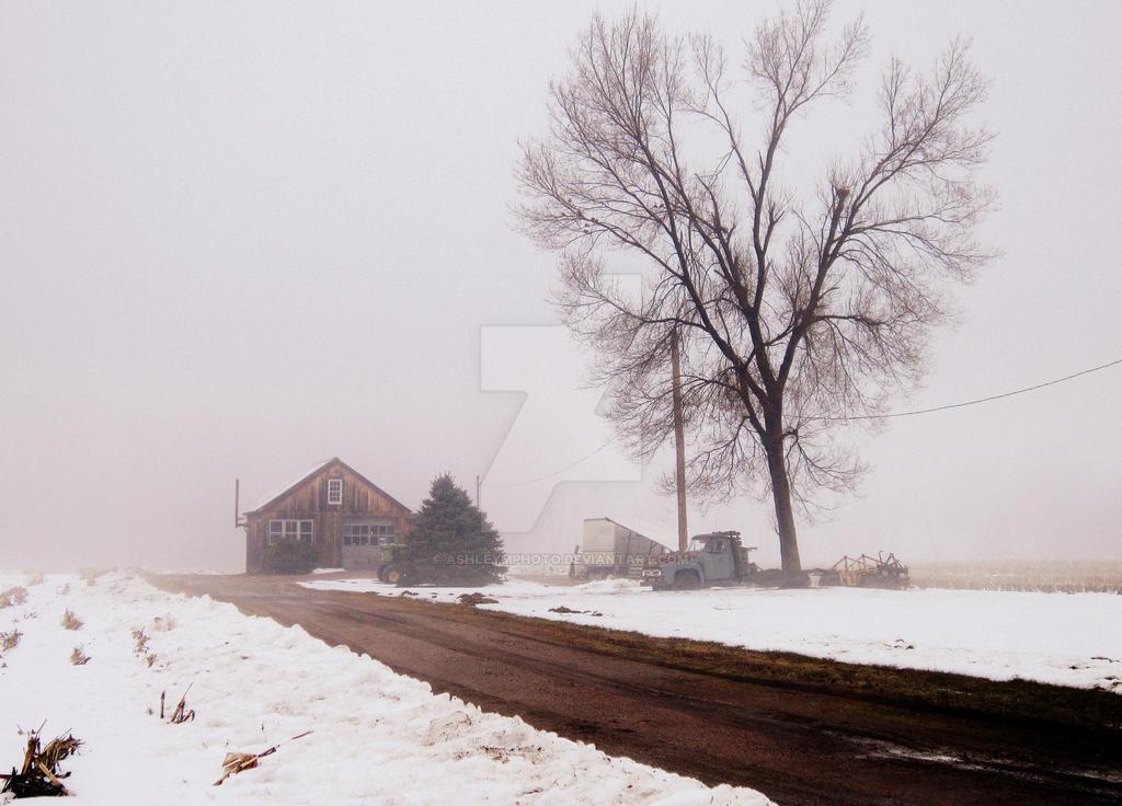 foggy winter day by ashleymphoto