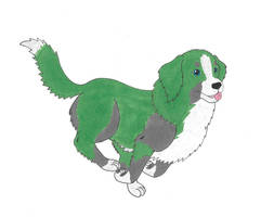 Dogverse Bulkhead