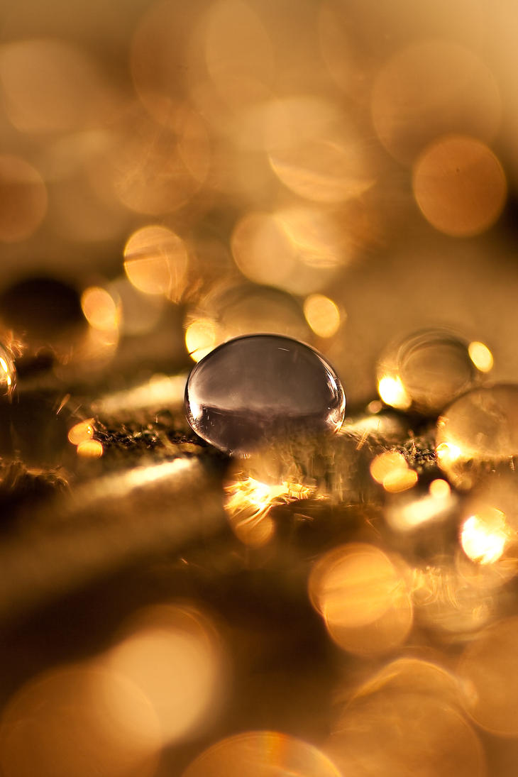 Bokeh_3 by 89-RAW-89