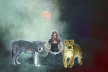 Leo And Wolf Moon