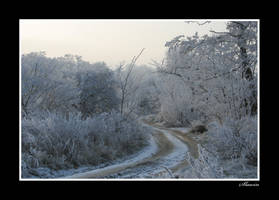 Path to winter by Slawin