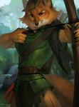 .: Robin Hood :.