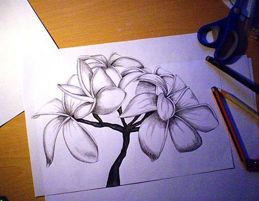 Красивые своими руками картинки карандашом