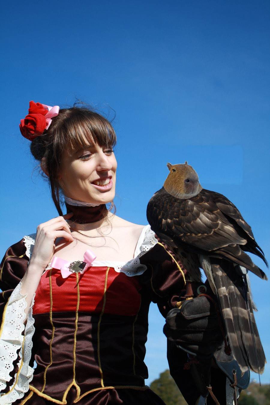 Beatrice with Capybarhawk