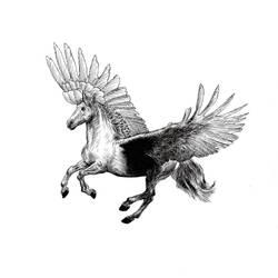 Pegasus in the Sky