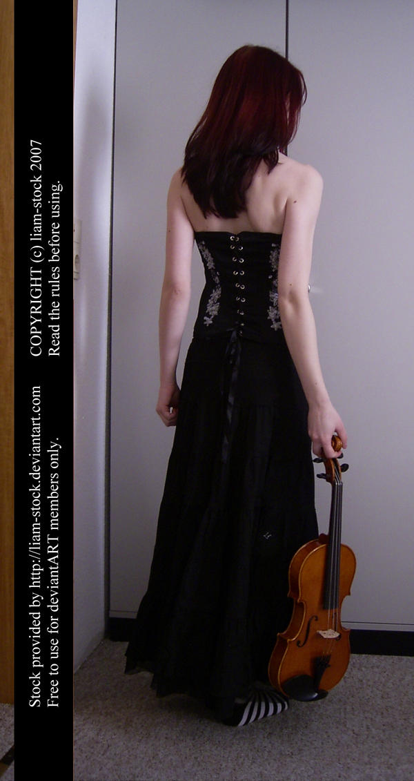 violin lady by liam-stock