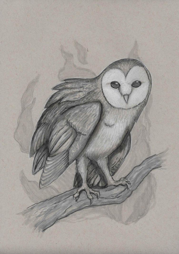 original drawing owl etsy by geck0gir1 on deviantart