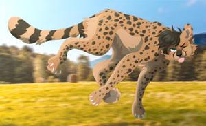 Haha cheetah go ZOOOOOOOOOOOOOOOOOOOOOOOOOOM