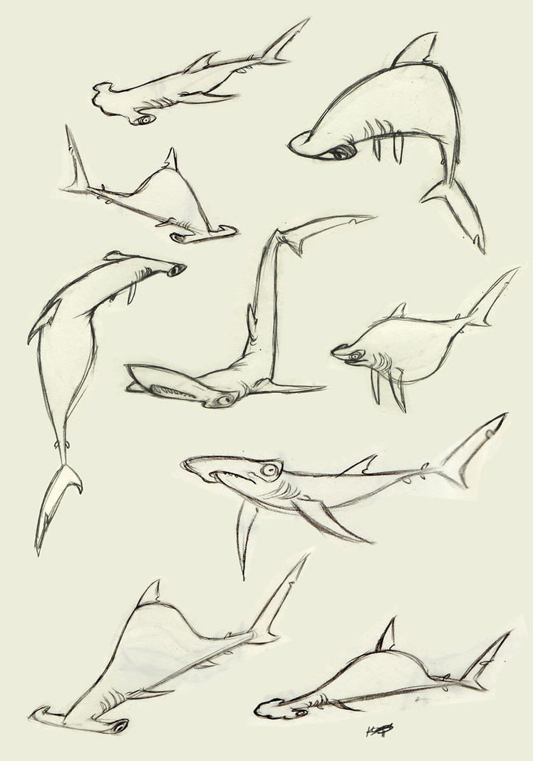 Hammerhead shark by polarkeet for Hammerhead shark coloring pages