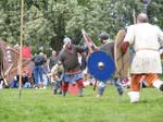 Viking Fight 110