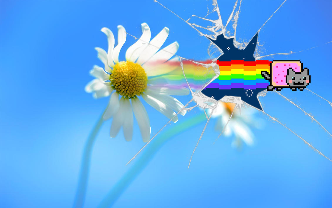 Nyan Cat ''Windows 8'' Wallpaper by Jayro-Jones