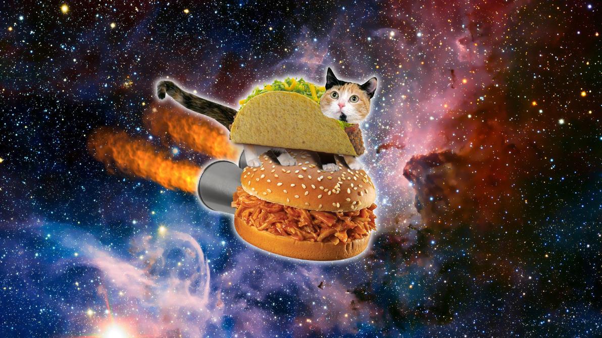 Taco Cat In Space By Jayro Jones