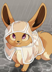 Eevee Raincoat by DVixie